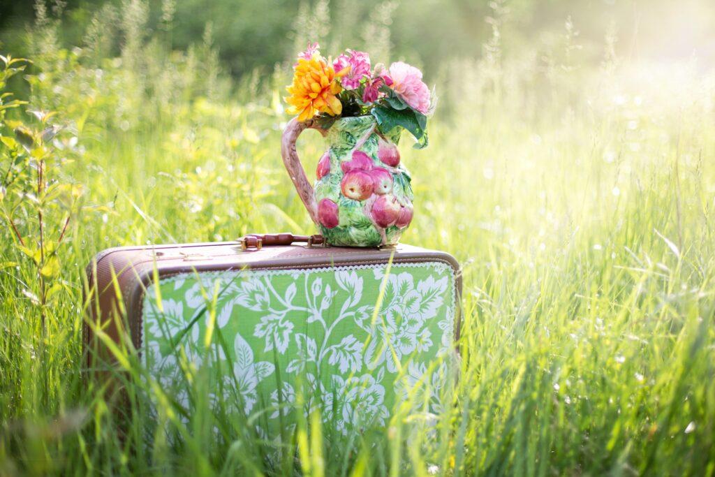 Cvetne esencije i suptilni nivoi ljudske duše spakovani u kofer.